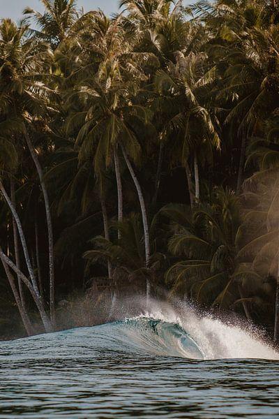 Mentawai-Wellen 2 von Andy Troy