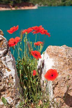 Lac de Saint Croix in de Franse Provence van Ivonne Wierink