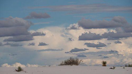 White Sands - New Mexico van