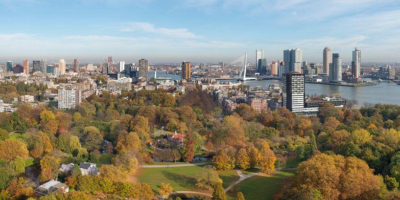 Skyline von Rotterdam von Rob IJsselstein