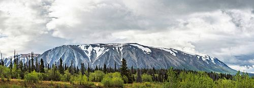 Langgerekte berg in Alaska onder een donkere wolk