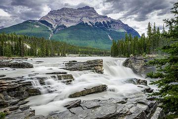 Athabasca Falls von Peter Vruggink