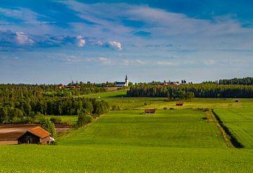 Grüne Felder in Schweden von Hamperium Photography