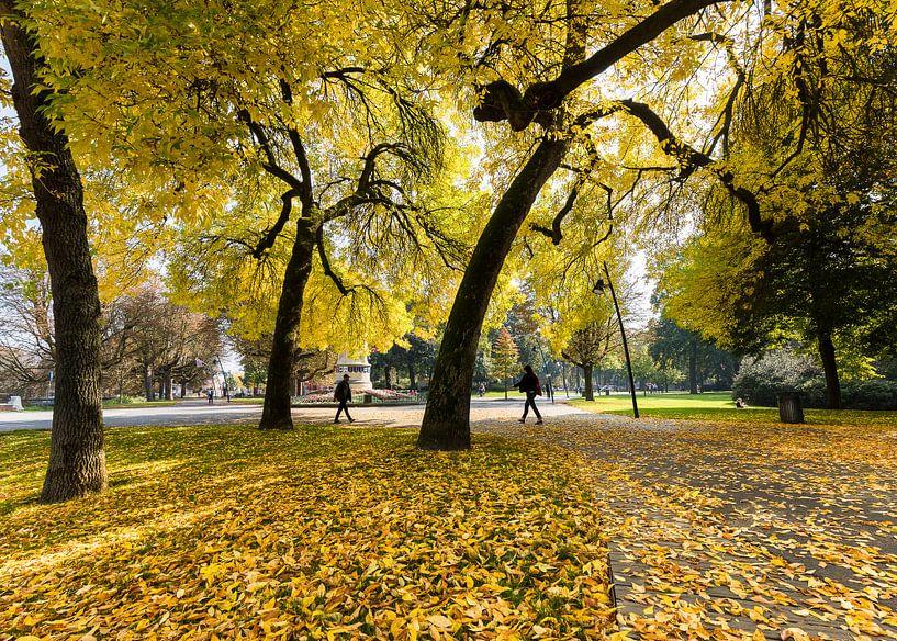 Herfstkleuren in Park Valkenberg Breda van Jean-Paul Wagemakers