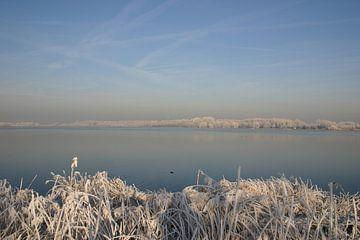 Winters uitzicht van Erwin Woutersen
