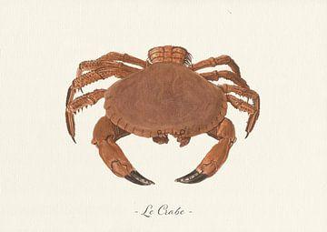 Le Crabe sur Walljar
