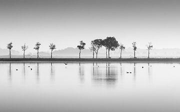 Vogels op het water van Marga Vroom