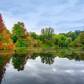 Herfstbos aan het water van Michel Knikker