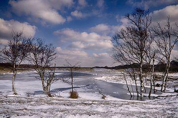 Winterlandschap Nederlands duingebied van Robert van der Horst