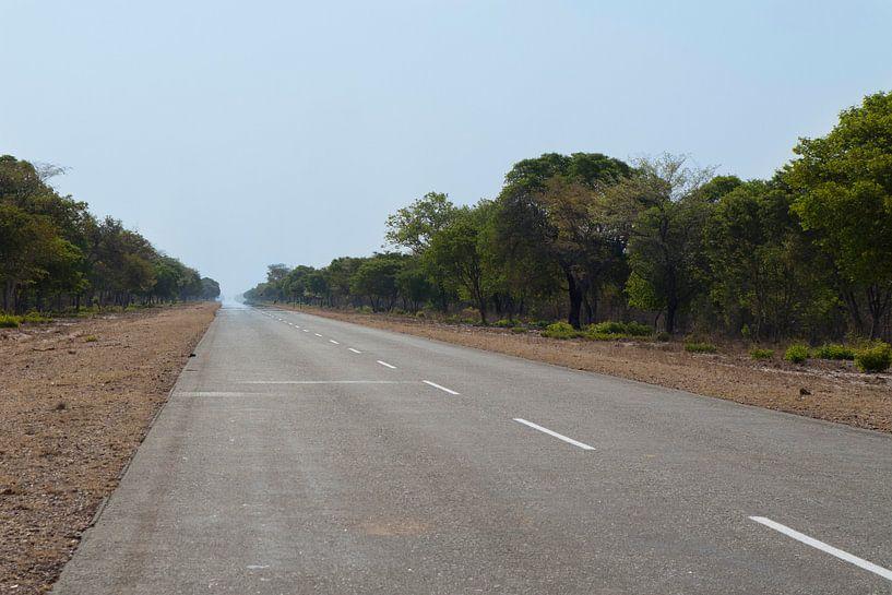 Weg naar de horizon van Remco Siero
