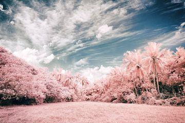 Unawatuna Infrared von Insolitus Fotografie