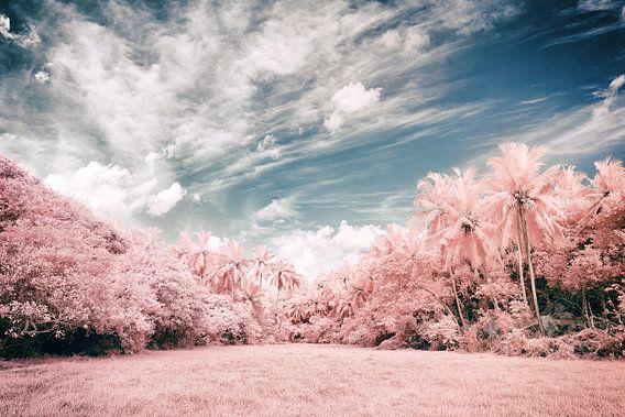 Unawatuna Infrarood van Insolitus Fotografie