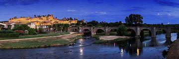Carcassonne Panorama von Frank Herrmann