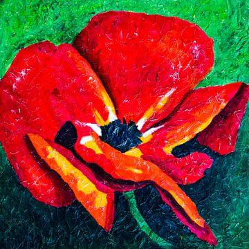 Mohnblume von Lida Bruinen
