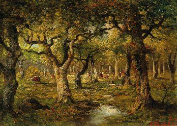Im Wald von Barbizon