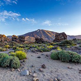 Los Roques de Garcia in Teide National Park van Easycopters