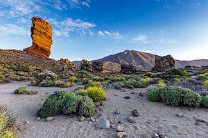 Los Roques de Garcia in Teide National Park von
