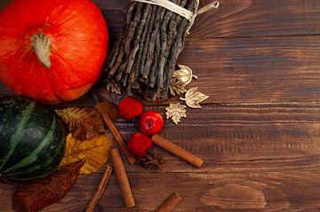Herfst van zippora wiese