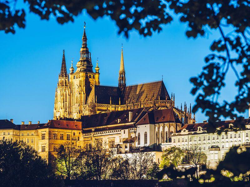 Prague Castle / St. Vitus Cathedral van Alexander Voss