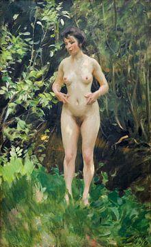 Vrouwelijk naakt, Leda - Anders Zorn -1910 van Atelier Liesjes