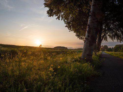 Eenzame fietser van Mattijs Diepraam