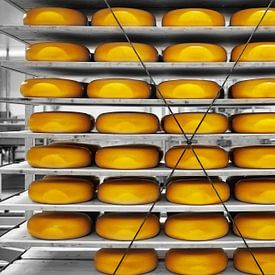 Say Cheese! von Wendy Bos