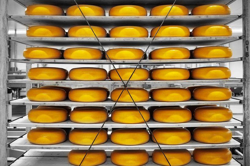 Say Cheese! van Wendy Bos