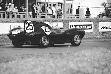 VINTAGE RACE 25 sur Jaap Ros