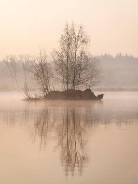 Eine schöne Insel mit Bäumen in einem Wald in den Niederlanden von Jos Pannekoek