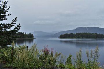 De Noorse fjorden van Naomi Elshoff