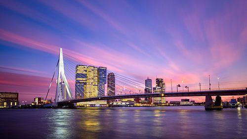 Schönheit in Rotterdam