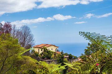 Blick auf ein Haus in Funchal auf der Insel Madeira von Rico Ködder