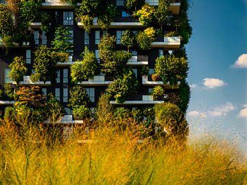 La forêt verticale de Milan dans la lumière du matin sur Roy Bisschops | ZEROPXL