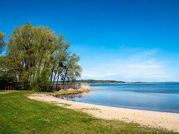 Het Kummerowermeer in het Mecklenburgse merengebied in Duitsland van Animaflora PicsStock