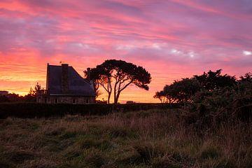Sonnenuntergang in der Bretagne bei Ploumanach von Rico Ködder