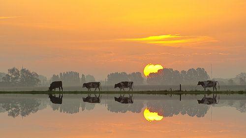 Dutchlandscape von Hans de Rooij