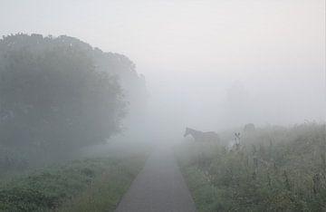 Klundert - paarden in de mist van Esther Leijten-Kupers