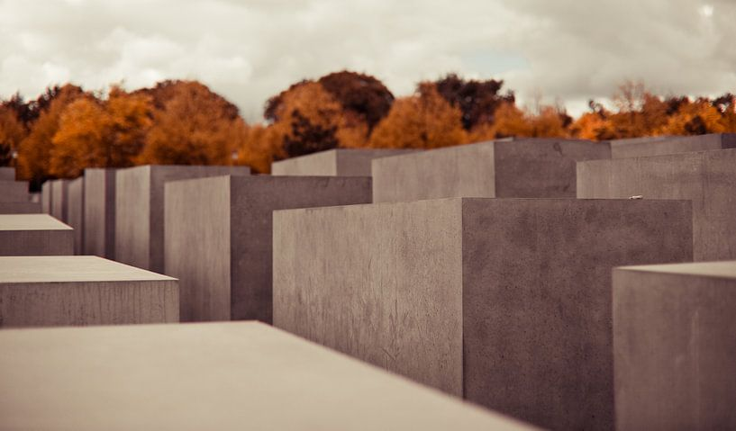 The silence of the past van Jesse Kraal