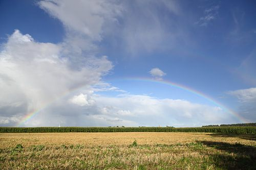 Land unterm Regenbogen von Rolf Pötsch