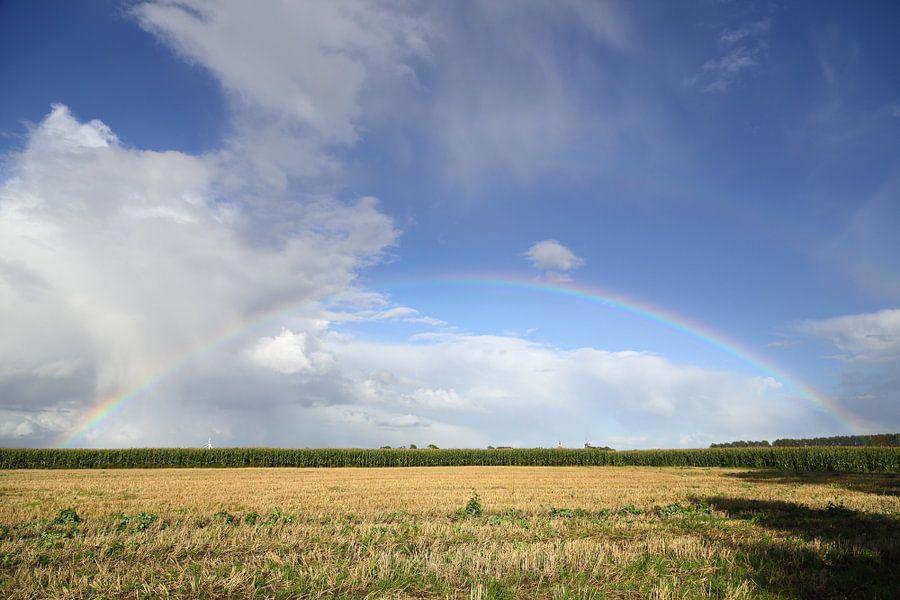 Land onder de regenboog van Rolf Pötsch