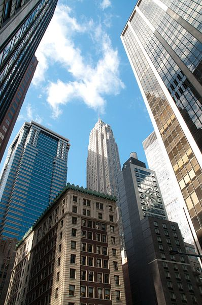 New york near empire state building van Erik van 't Hof