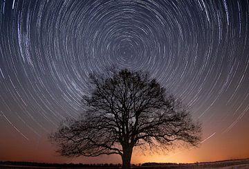 Star trails Gelderland van Dennis Bresser