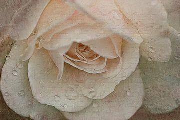 liefdesgedicht van Claudia Moeckel