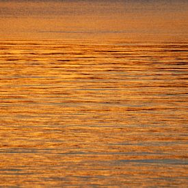 Gouden zee van Margreet Frowijn