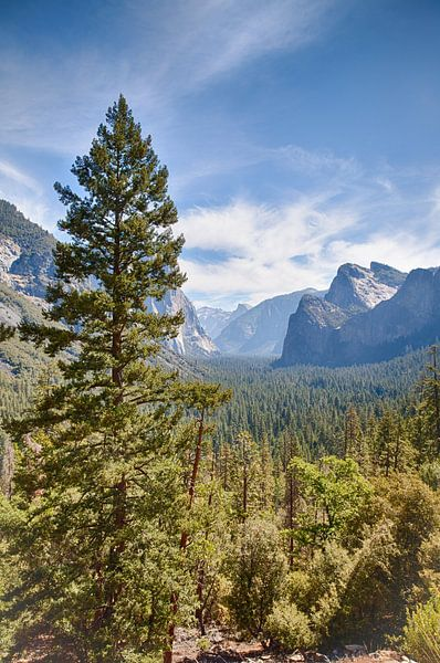Yosemite Nationalpark, USA van Jan Schuler