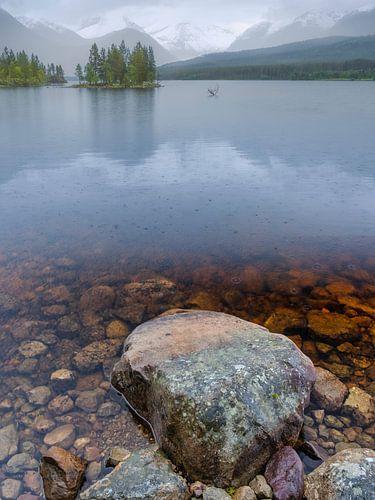 Eilandje in het meer