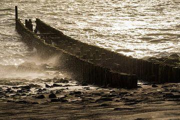 Storm aan zee van Mario Lere