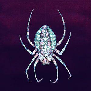 L'araignée blanche
