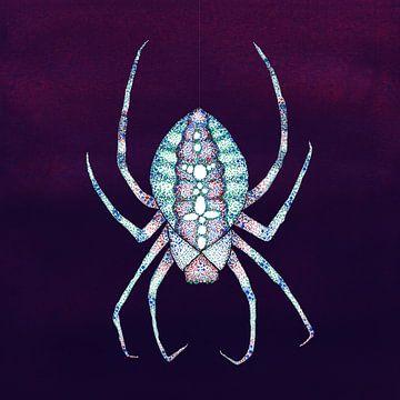 De witte spin van Bianca Wisseloo