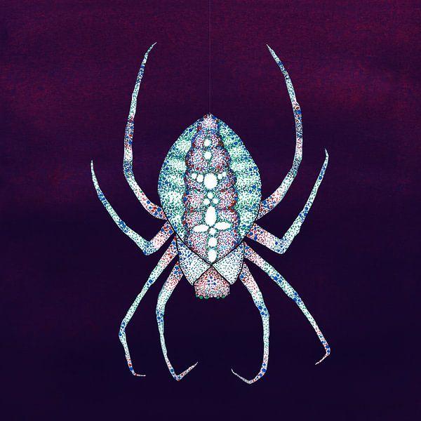 L'araignée blanche sur Bianca Wisseloo